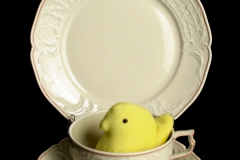 Rosenthal China with yellow peep